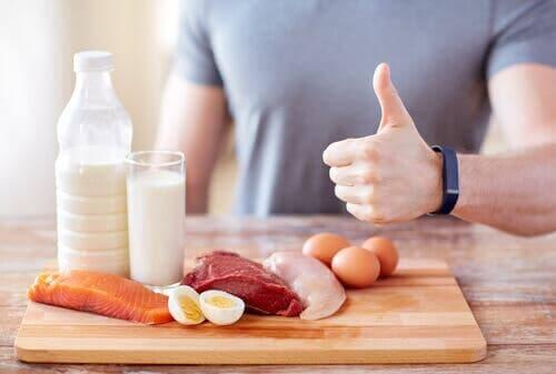 단백질 섭취의 이점