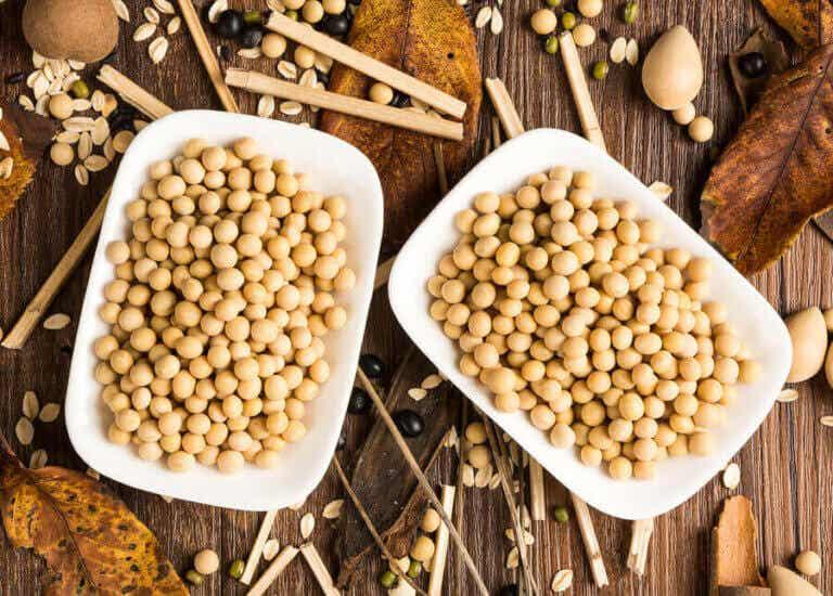 콩 단백질은 건강에 유익할까 해로울까