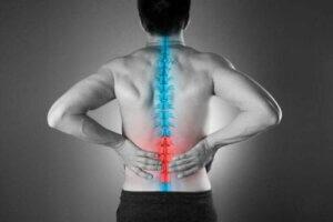 요통 완화에 도움이 되는 자연 치료법 4가지
