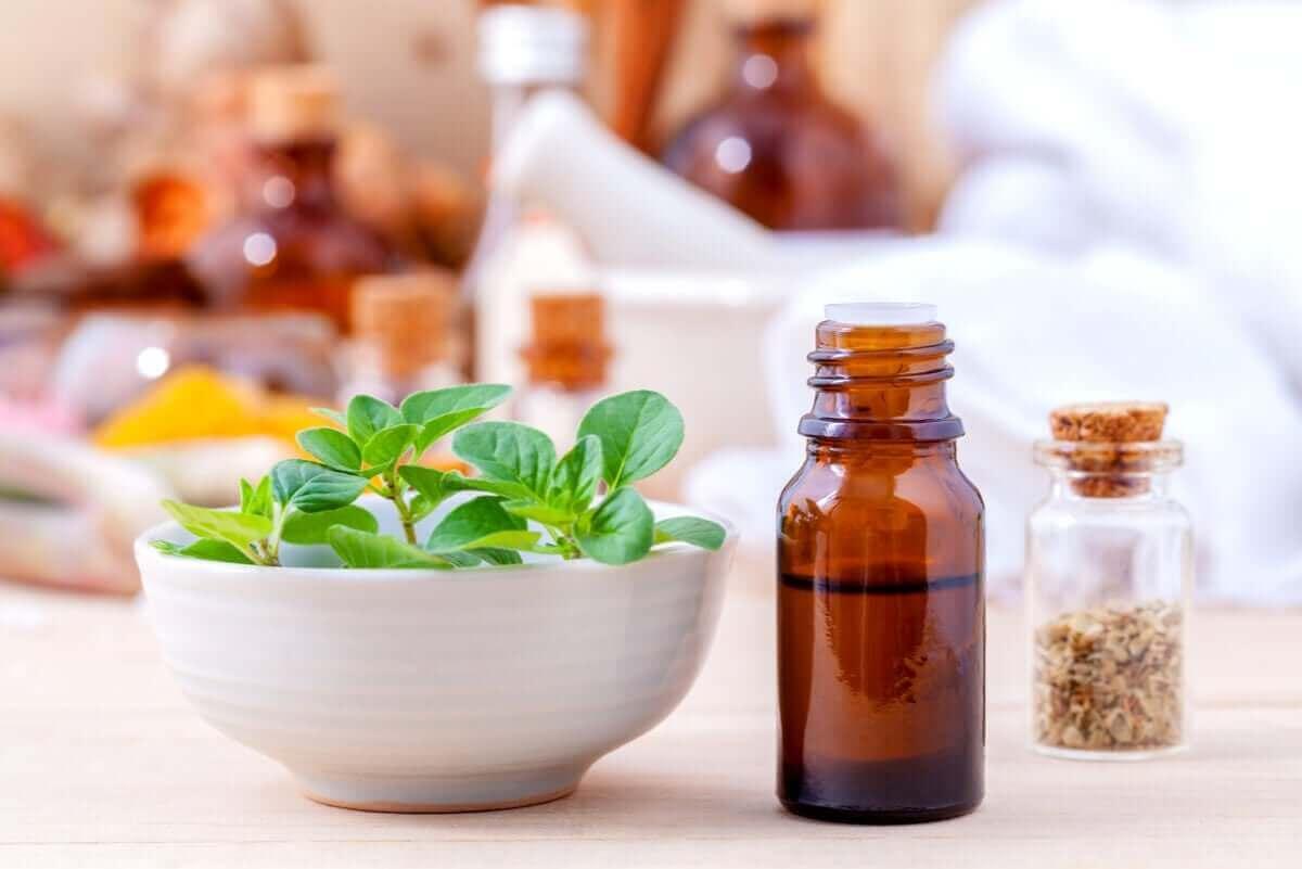 기관지염 및 기침 치료에 오레가노 에센셜 오일을 사용하는 방법