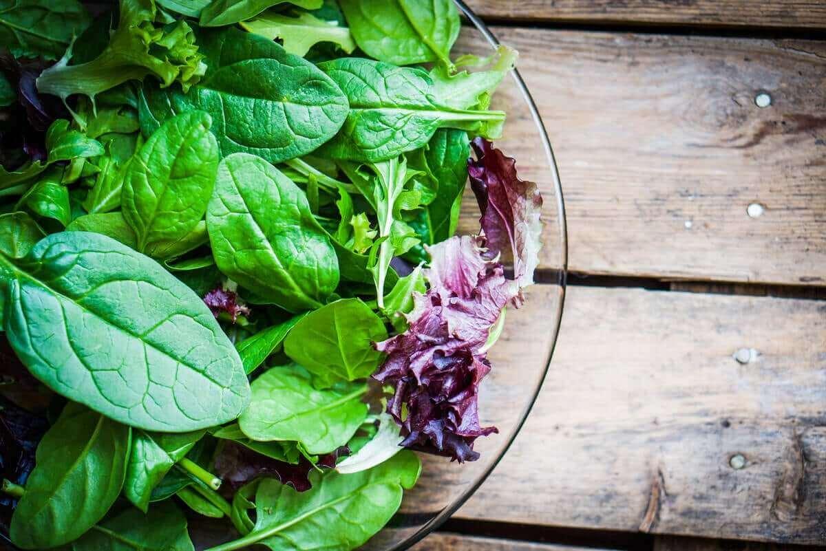 비건 채식이 유발할 수 있는 영양 결핍은 무엇일까?