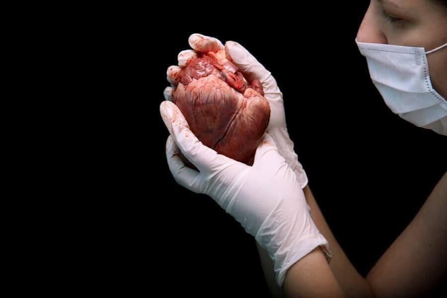 심장 이식의 절차