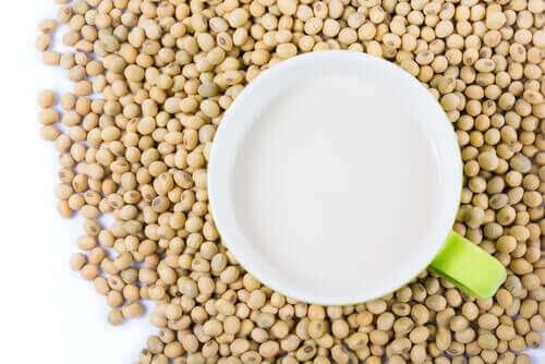 콩 단백질: 건강에 유익할까 해로울까
