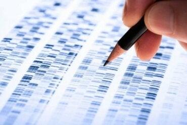 언어 습득 전 농을 위한 유전자 치료