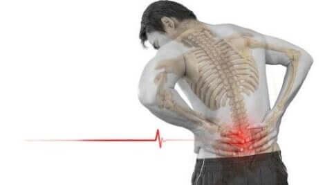 척추 전방 전위증의 가장 일반적인 증상