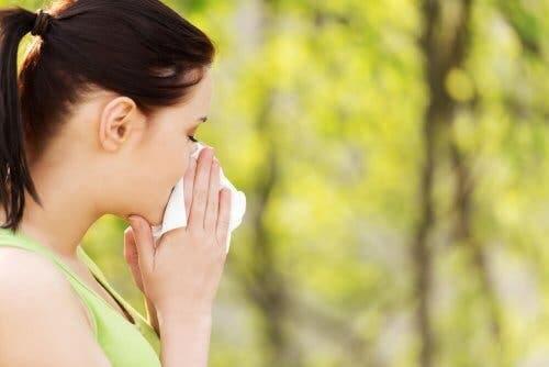 꽃가루 알레르기에 좋은 5가지 자연 요법