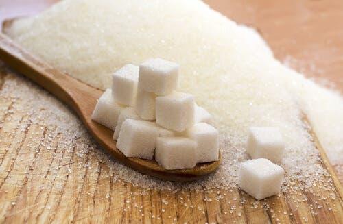 설탕 섭취를
