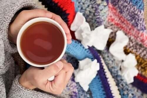가래 기침 치료제를 만드는 3가지 방법