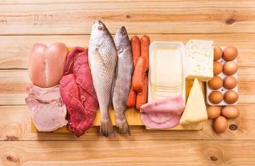 5. 단백질을 섭취하자