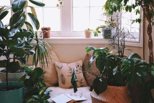 집 안에 편안한 공간을 꾸미는 방법