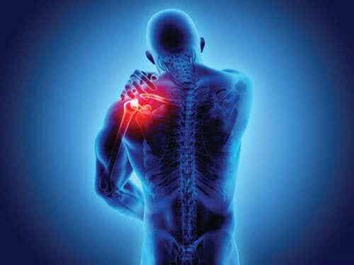 척추관절병증의 증상 및 진단