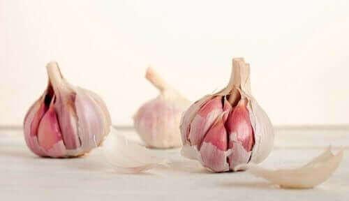마늘의 영양 특성