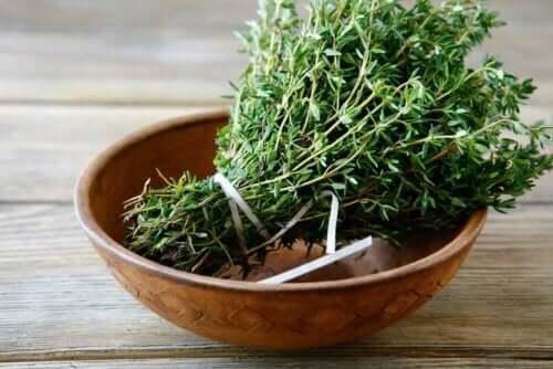 백리향은 무엇이며 우리는 이 식물을 어떤 용도로 활용할 수 있을까?