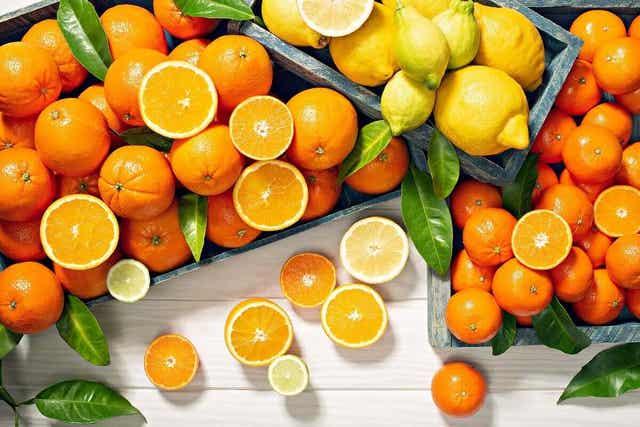 감귤류 과일 알레르기의 원인
