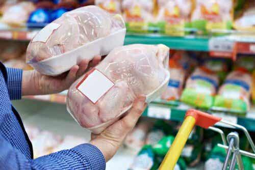 칠면조 고기와 닭고기의 차이점
