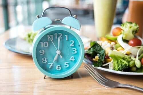 과학에 근거한 최적의 식사 시간