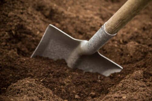 원예용 토양의 종류, 성분 및 장단점