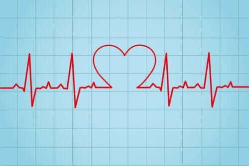 심박수 정의와 측정 방법
