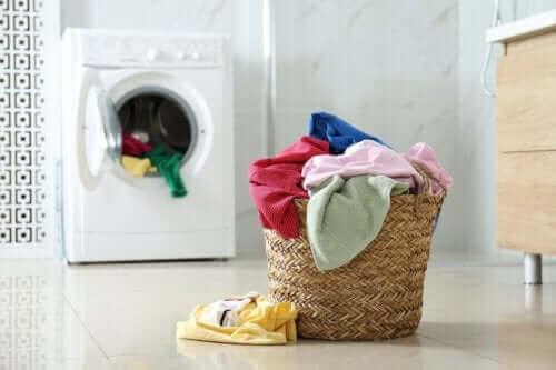 세탁기에 후추를 넣으면 어떻게 될까