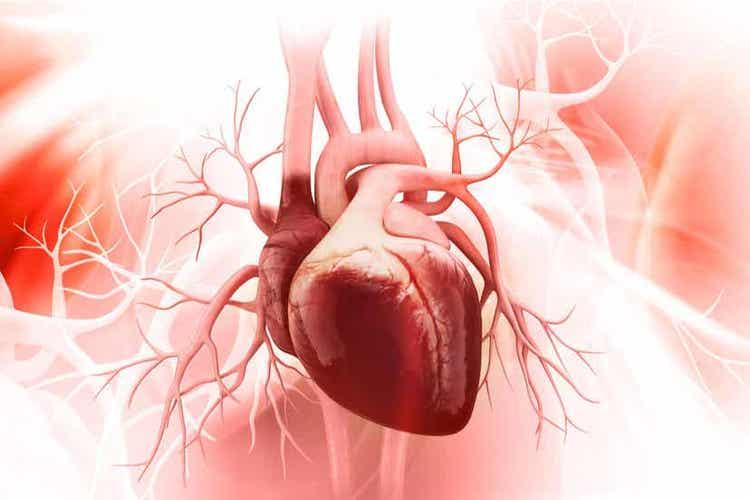 저강도 유산소 운동 심혈관계