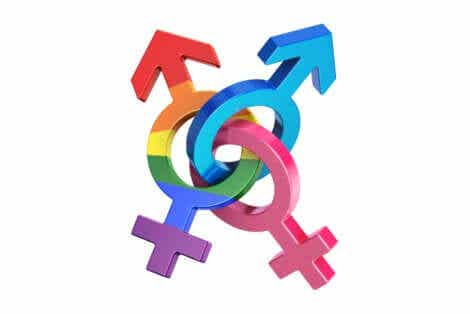성적 지향 범성애