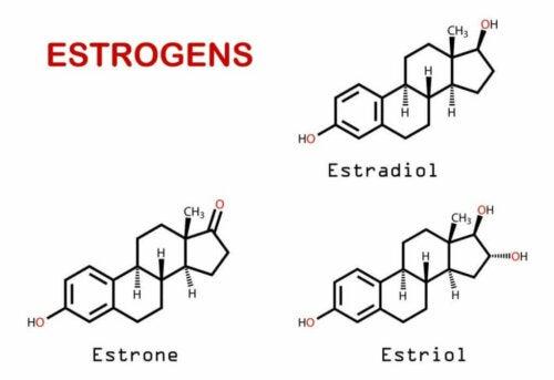 호르몬과 두통의 관계