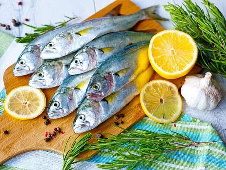 강직성 척추염 등푸른 생선