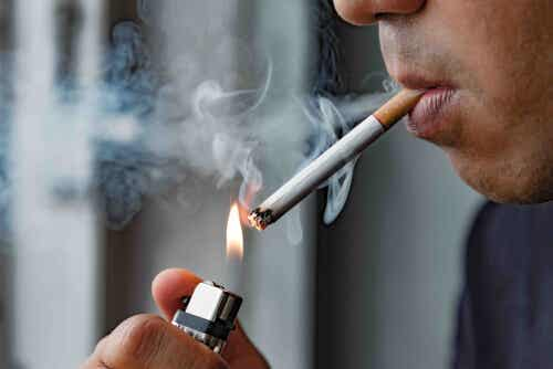 버거병 담배